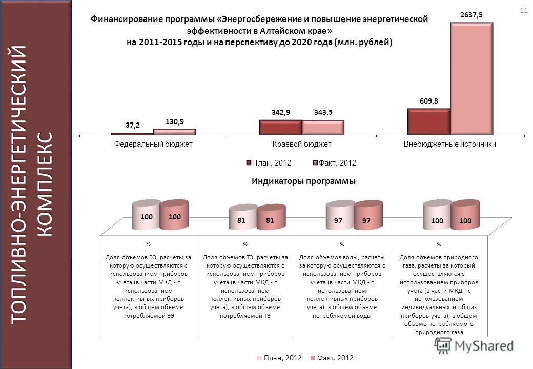 ТОПЛИВНО-ЭНЕРГЕТИЧЕСКИЙ КОМПЛЕКС Индикаторы программы 11