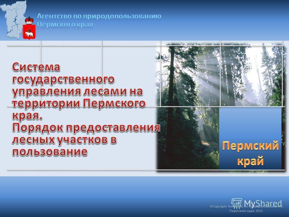 ©Copyright Агентство по природопользованию Пермского края 2011