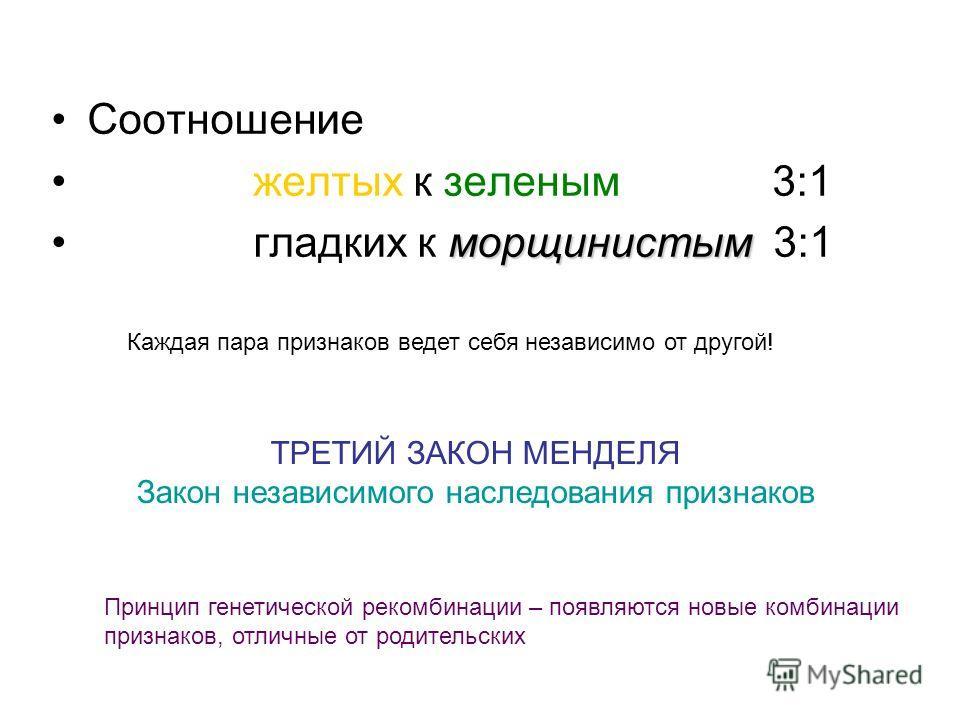 Соотношение желтых к зеленым 3:1 морщинистым гладких к морщинистым 3:1 Каждая пара признаков ведет себя независимо от другой! ТРЕТИЙ ЗАКОН МЕНДЕЛЯ Закон независимого наследования признаков Принцип генетической рекомбинации – появляются новые комбинац