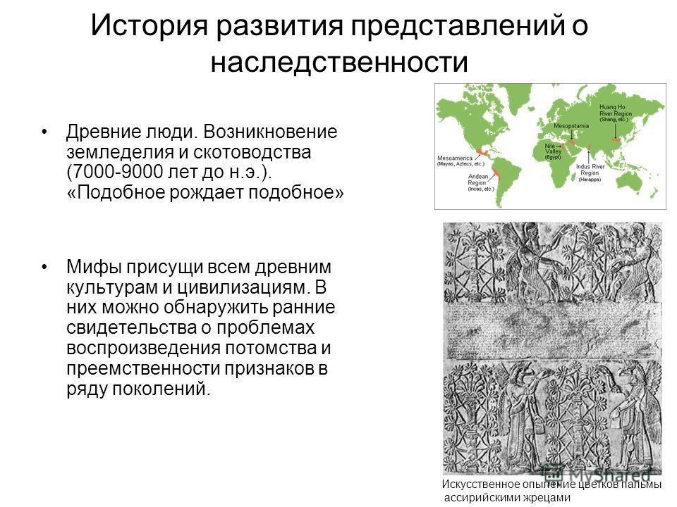История развития представлений о наследственности Древние люди. Возникновение земледелия и скотоводства (7000-9000 лет до н.э.). «Подобное рождает подобное» Мифы присущи всем древним культурам и цивилизациям. В них можно обнаружить ранние свидетельст