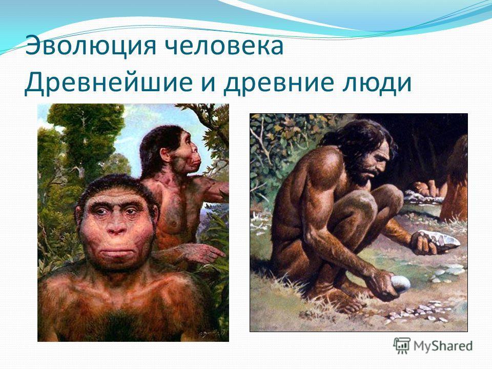 Эволюция человека Древнейшие и древние люди