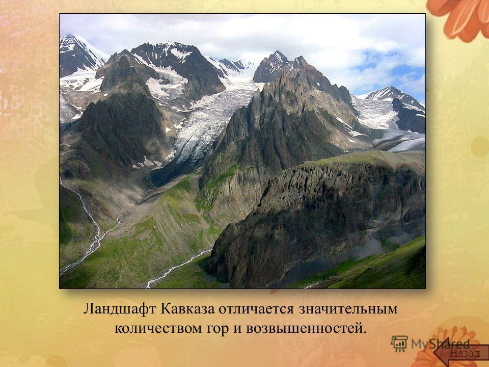 Ландшафт Кавказа отличается значительным количеством гор и возвышенностей. Назад