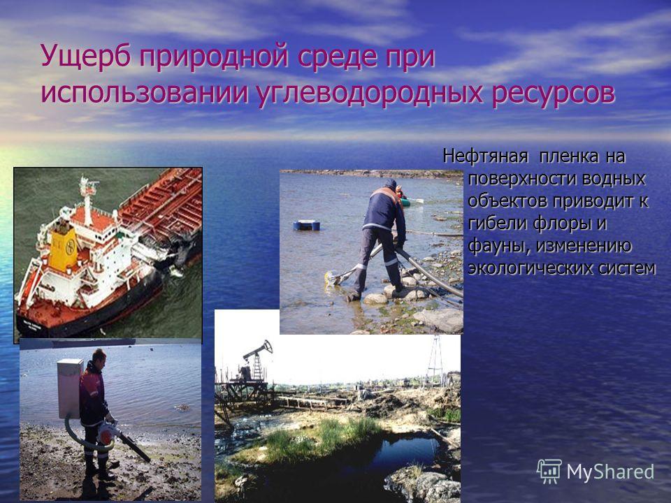 Ущерб природной среде при использовании углеводородных ресурсов Нефтяная пленка на поверхности водных объектов приводит к гибели флоры и фауны, изменению экологических систем