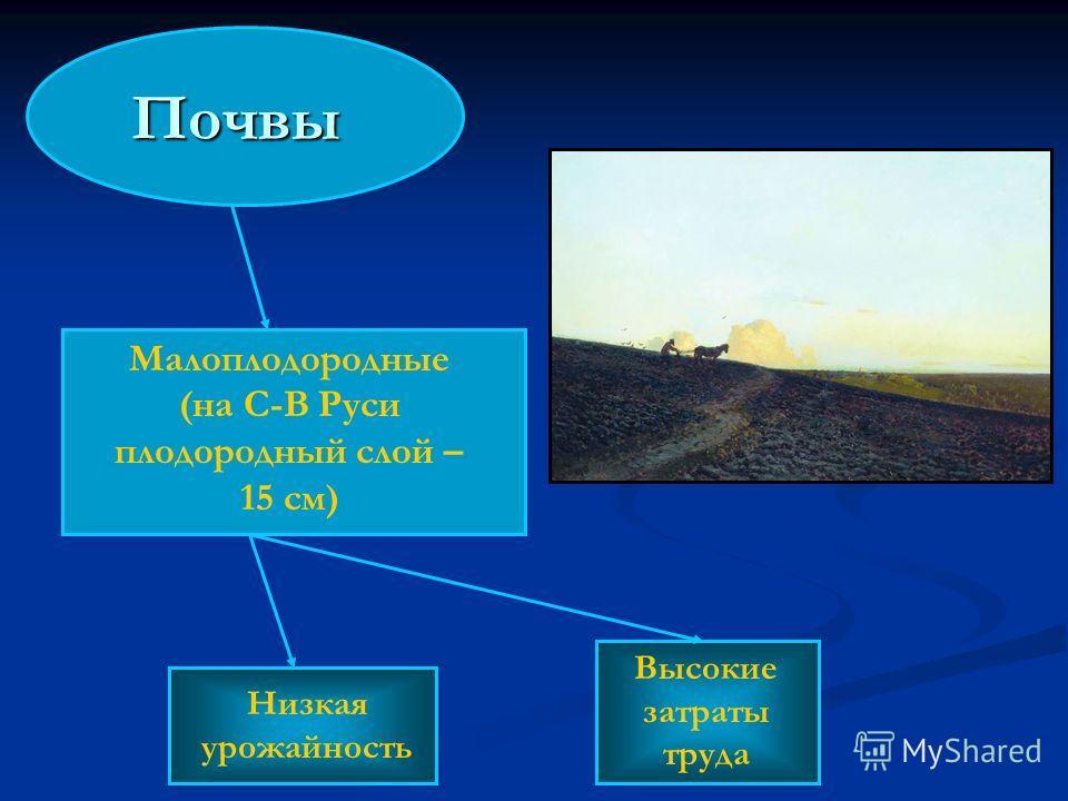 Почвы Малоплодородные (на С-В Руси плодородный слой – 15 см) Низкая урожайность Высокие затраты труда
