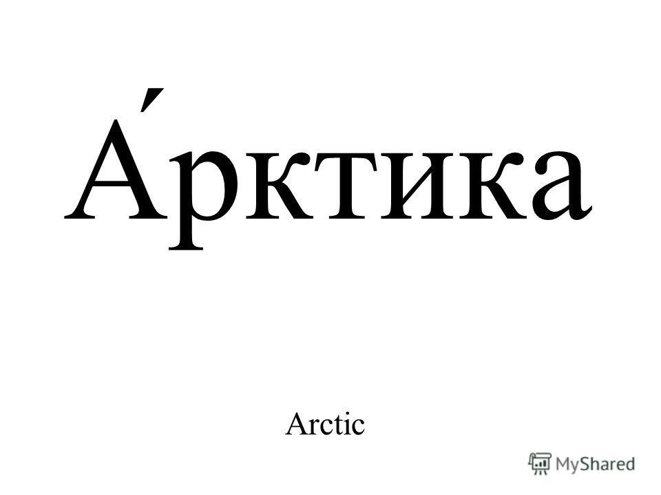 А́рктика Arctic