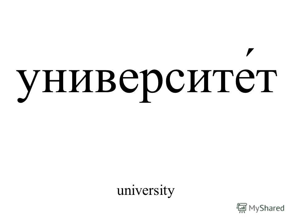 университе́т university