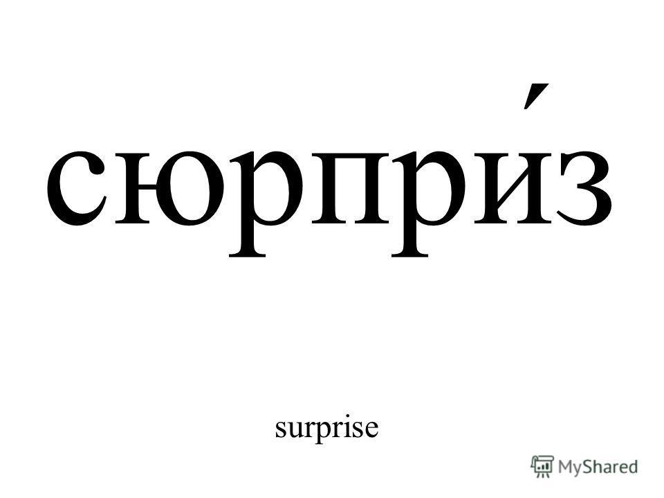 сюрпри́з surprise