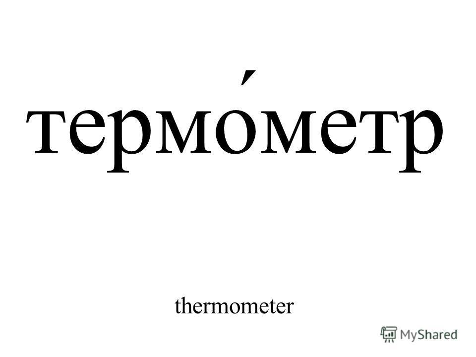 термо́метр thermometer