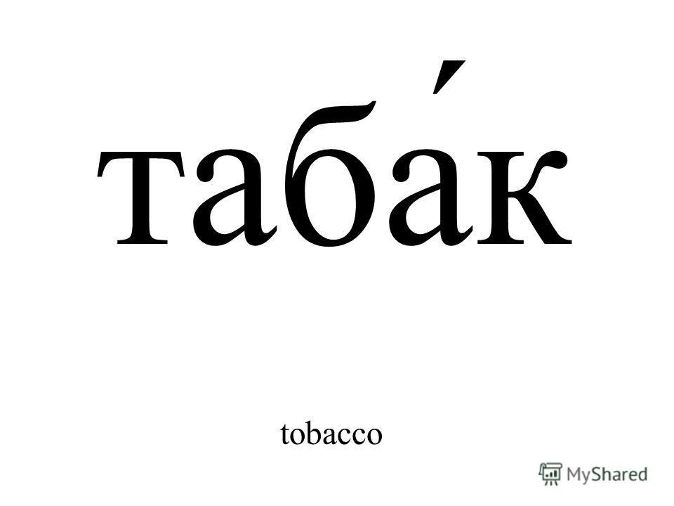таба́к tobacco