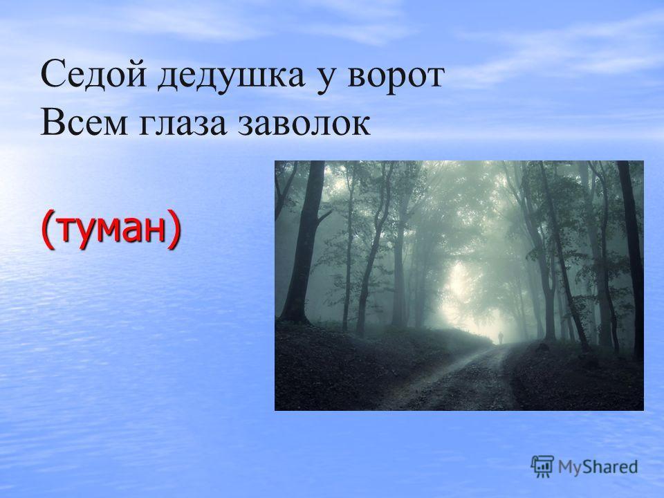 Седой дедушка у ворот Всем глаза заволок (туман)