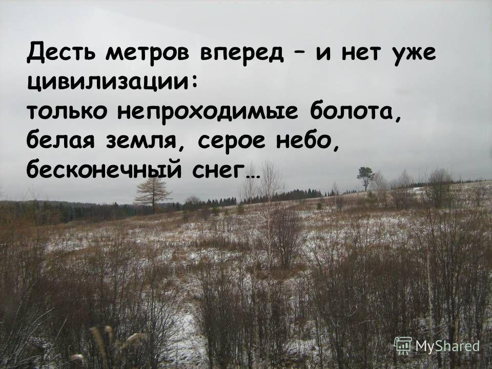 Десть метров вперед – и нет уже цивилизации: только непроходимые болота, белая земля, серое небо, бесконечный снег…