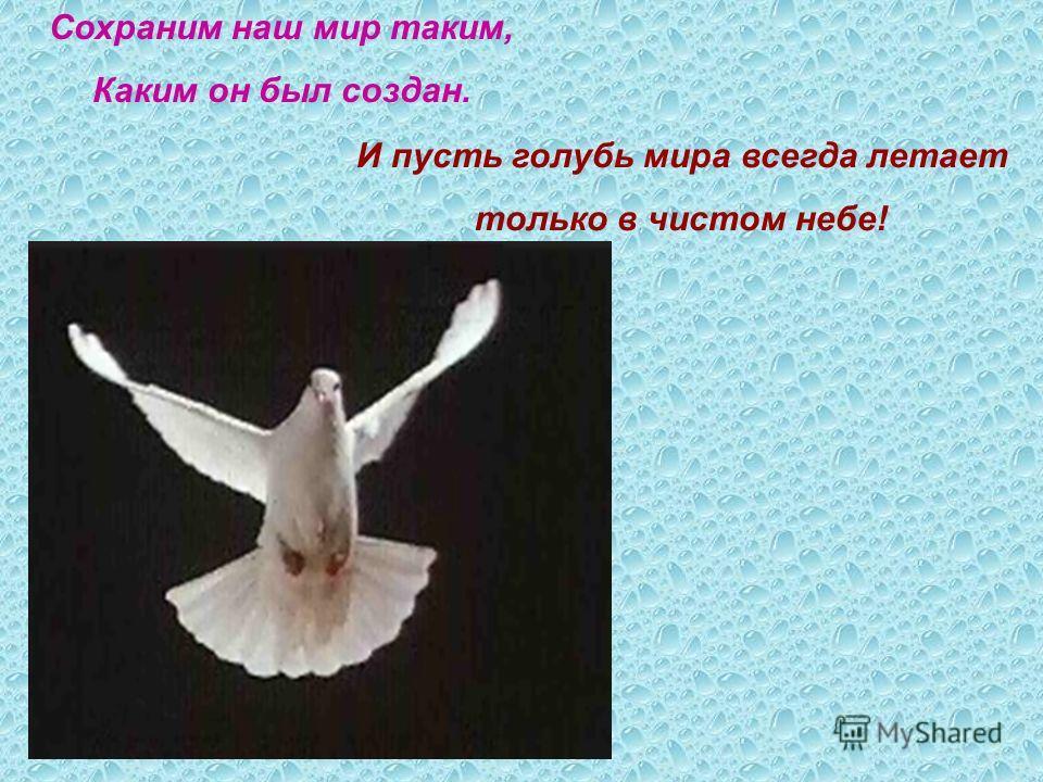 Сохраним наш мир таким, Каким он был создан. И пусть голубь мира всегда летает только в чистом небе!