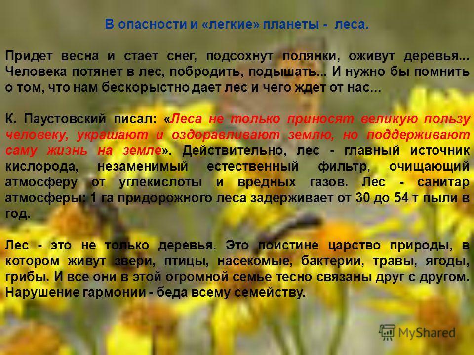 В опасности и «легкие» планеты - леса. Придет весна и стает снег, подсохнут полянки, оживут деревья... Человека потянет в лес, побродить, подышать... И нужно бы помнить о том, что нам бескорыстно дает лес и чего ждет от нас... К. Паустовский писал: «