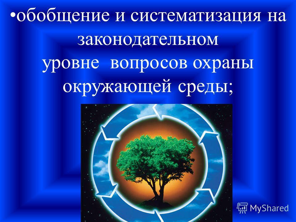 обобщение и систематизация на законодательном уровне вопросов охраны окружающей среды;