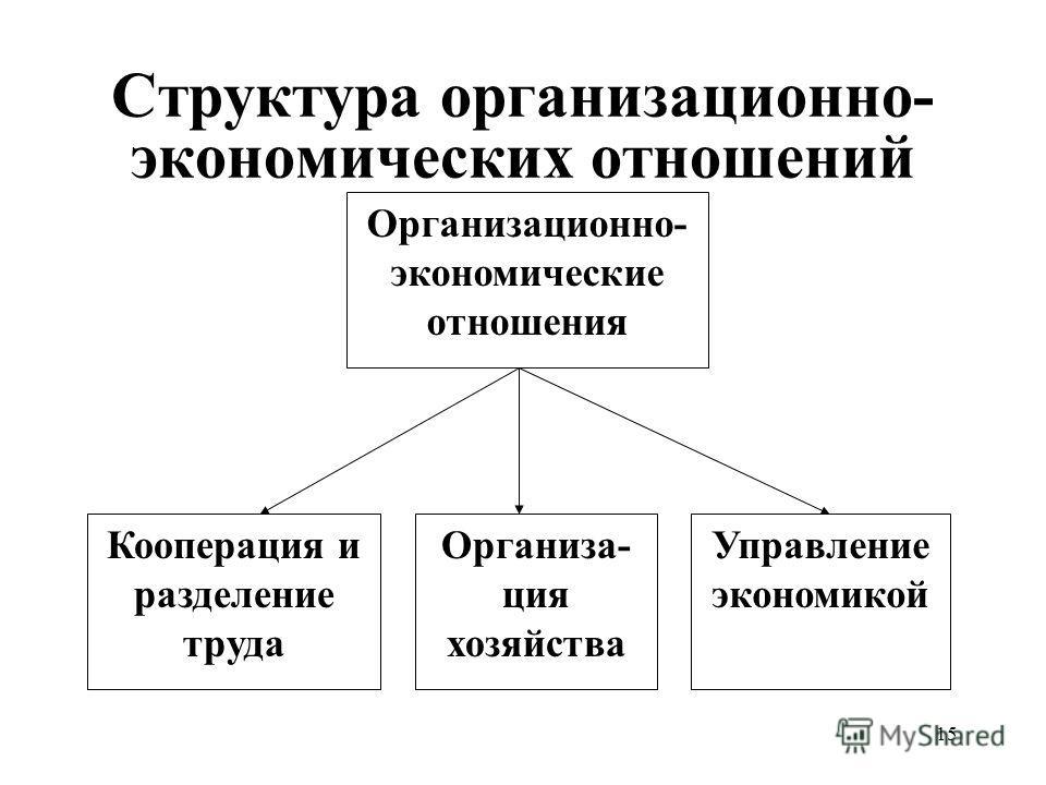 15 Структура организационно- экономических отношений Организационно- экономические отношения Организа- ция хозяйства Кооперация и разделение труда Управление экономикой