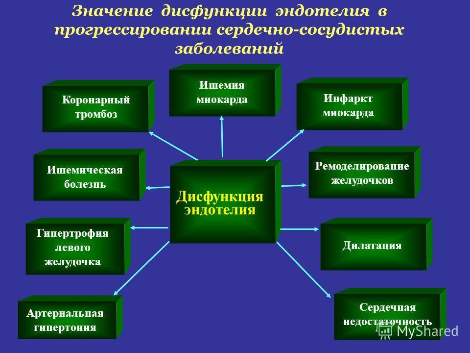 Артериальная гипертония Значение дисфункции эндотелия в прогрессировании сердечно-сосудистых заболеваний Дисфункция эндотелия Гипертрофия левого желудочка Ишемическая болезнь Коронарный тромбоз Ишемия миокарда Инфаркт миокарда Ремоделирование желудоч