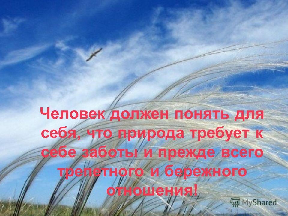 Человек должен понять для себя, что природа требует к себе заботы и прежде всего трепетного и бережного отношения!