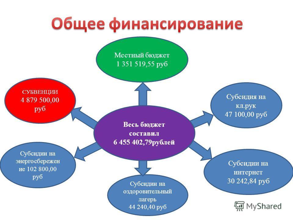 Весь бюджет составил 6 455 402,79рублей СУБВЕНЦИИ 4 879 500,00 руб Местный бюджет 1 351 519,55 руб Субсидии на энергосбережен ие 102 800,00 руб Субсидия на кл.рук 47 100,00 руб Субсидии на интернет 30 242,84 руб Субсидии на оздоровительный лагерь 44
