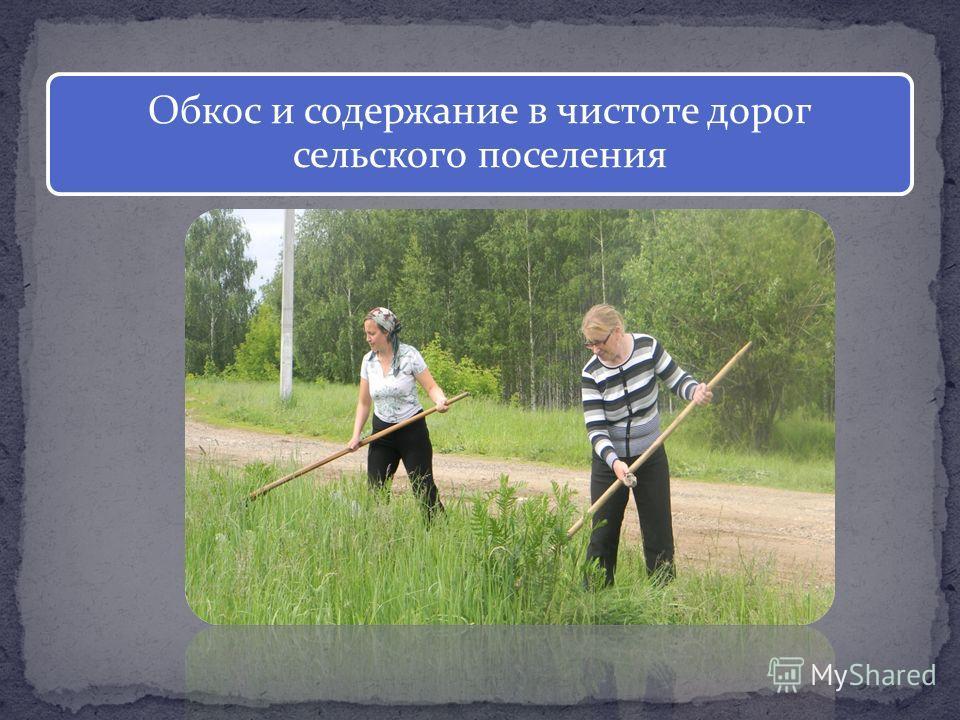 Обкос и содержание в чистоте дорог сельского поселения