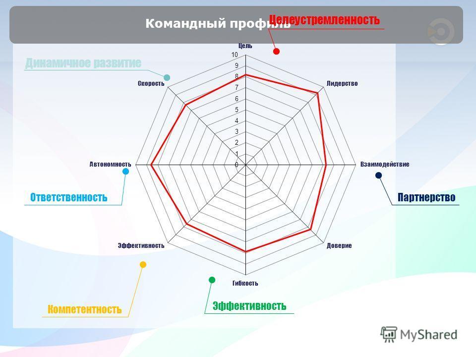 Командный профиль Партнерство Эффективность Компетентность Ответственность Динамичное развитие Целеустремленность