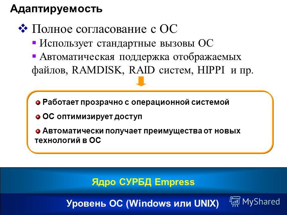 Адаптируемость Полное согласование с ОС Использует стандартные вызовы ОС Автоматическая поддержка отображаемых файлов, RAMDISK, RAID систем, HIPPI и пр. Работает прозрачно с операционной системой ОС оптимизирует доступ Автоматически получает преимуще