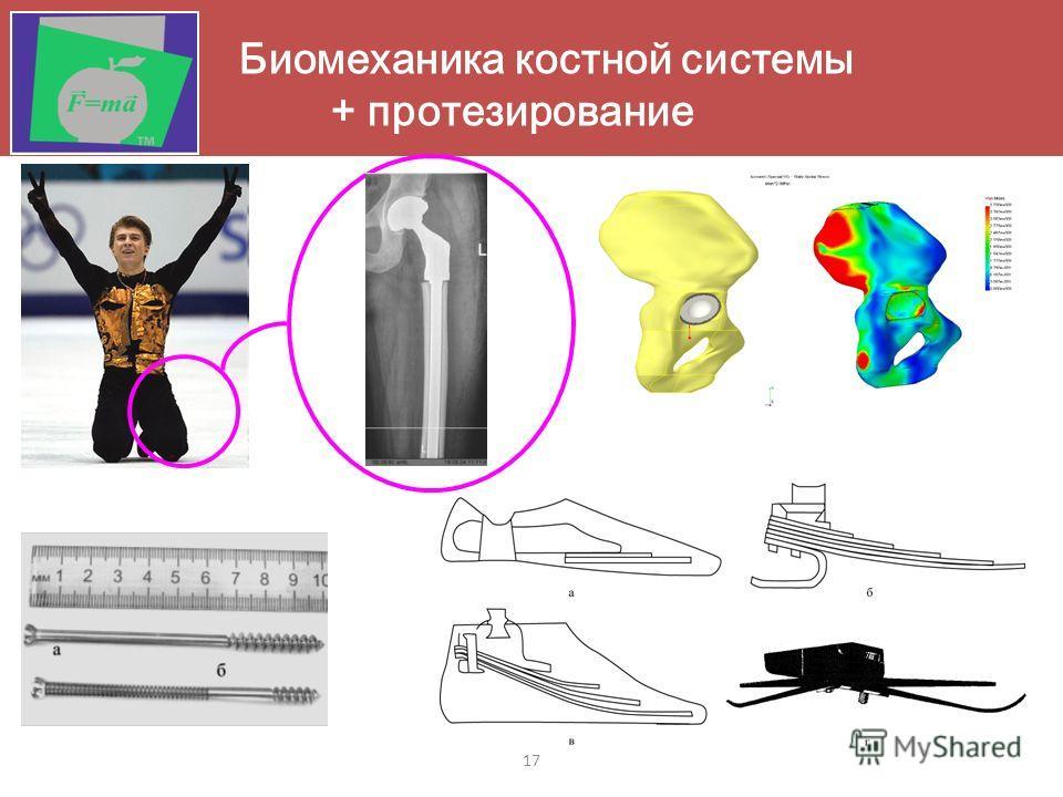 17 Биомеханика костной системы + протезирование