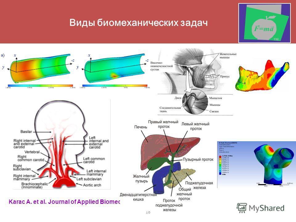 18 Виды биомеханических задач Karac A. et al. Journal of Applied Biomechanics (2006)