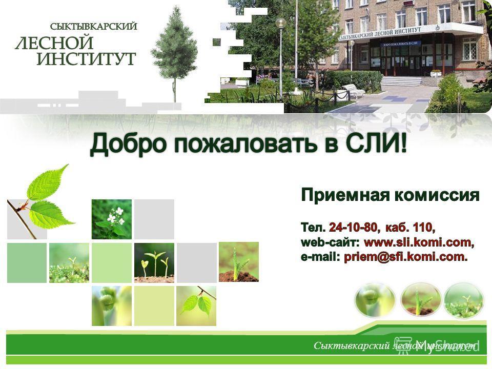L/O/G/O Сыктывкарский лесной институт