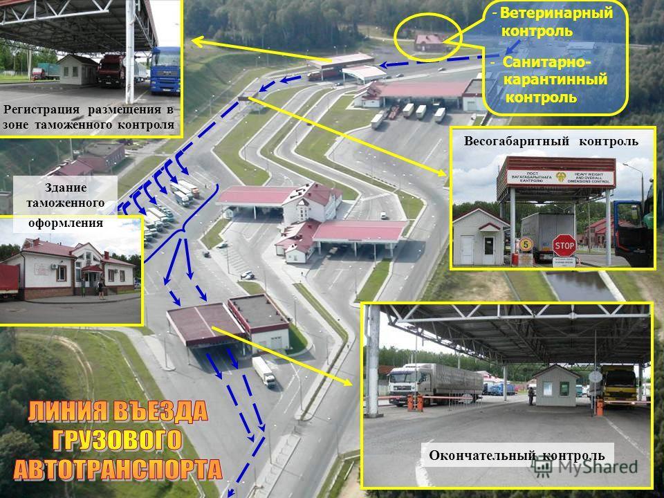- Ветеринарный контроль - Санитарно- карантинный контроль Регистрация размещения в зоне таможенного контроля Весогабаритный контроль Здание таможенного оформления Окончательный контроль