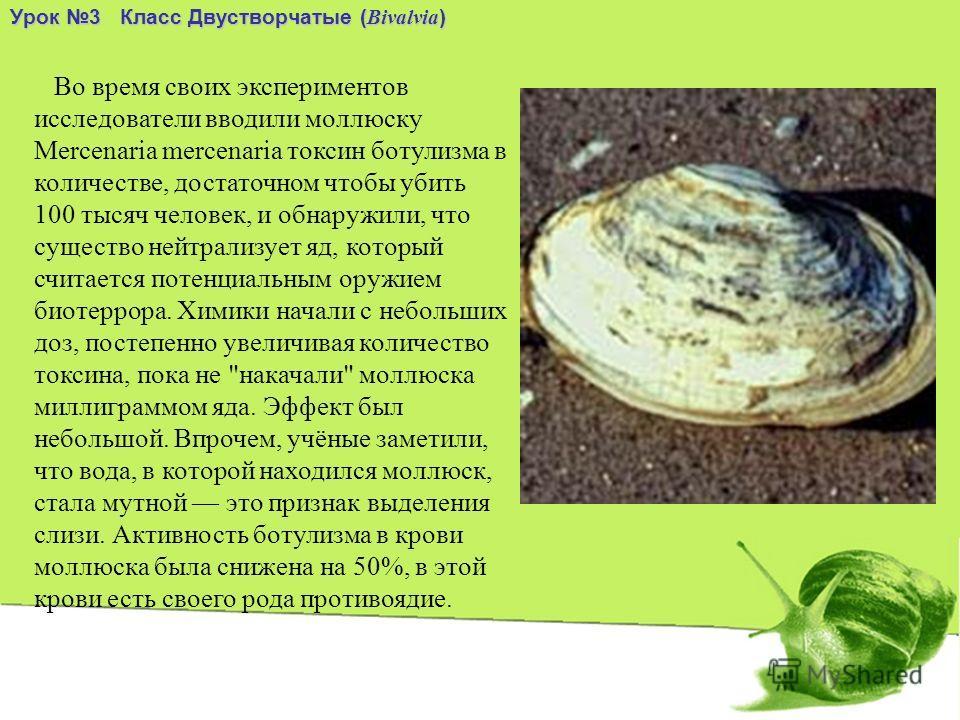 Урок 3 Класс Двустворчатые ( Bivalvia ) Во время своих экспериментов исследователи вводили моллюску Mercenaria mercenaria токсин ботулизма в количестве, достаточном чтобы убить 100 тысяч человек, и обнаружили, что существо нейтрализует яд, который сч