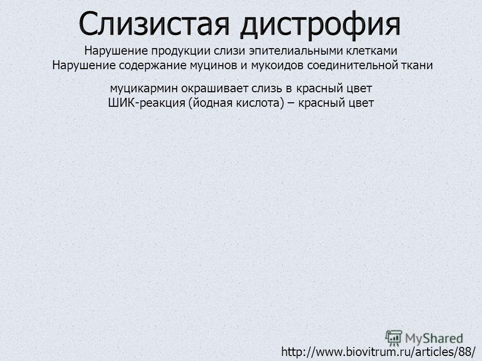 Нарушение продукции слизи эпителиальными клетками Нарушение содержание муцинов и мукоидов соединительной ткани муцикармин окрашивает слизь в красный цвет ШИК-реакция (йодная кислота) – красный цвет http://www.biovitrum.ru/articles/88/