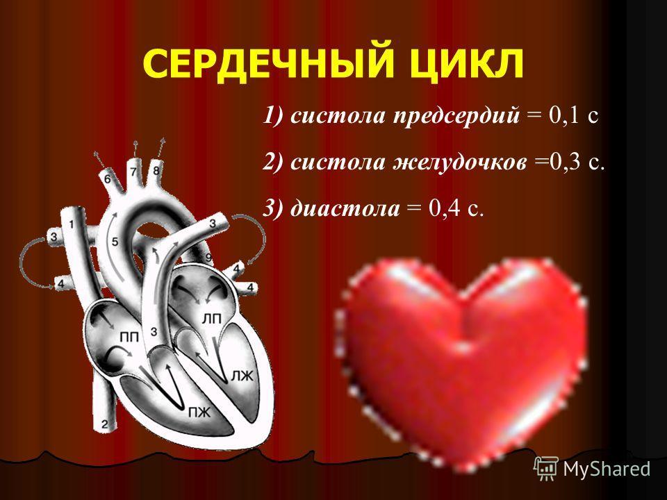 СЕРДЕЧНЫЙ ЦИКЛ 1) систола предсердий = 0,1 с 2) систола желудочков =0,3 с. 3) диастола = 0,4 с.