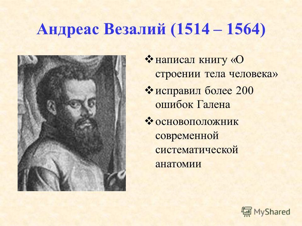 Андреас Везалий (1514 – 1564) написал книгу «О строении тела человека» исправил более 200 ошибок Галена основоположник современной систематической анатомии