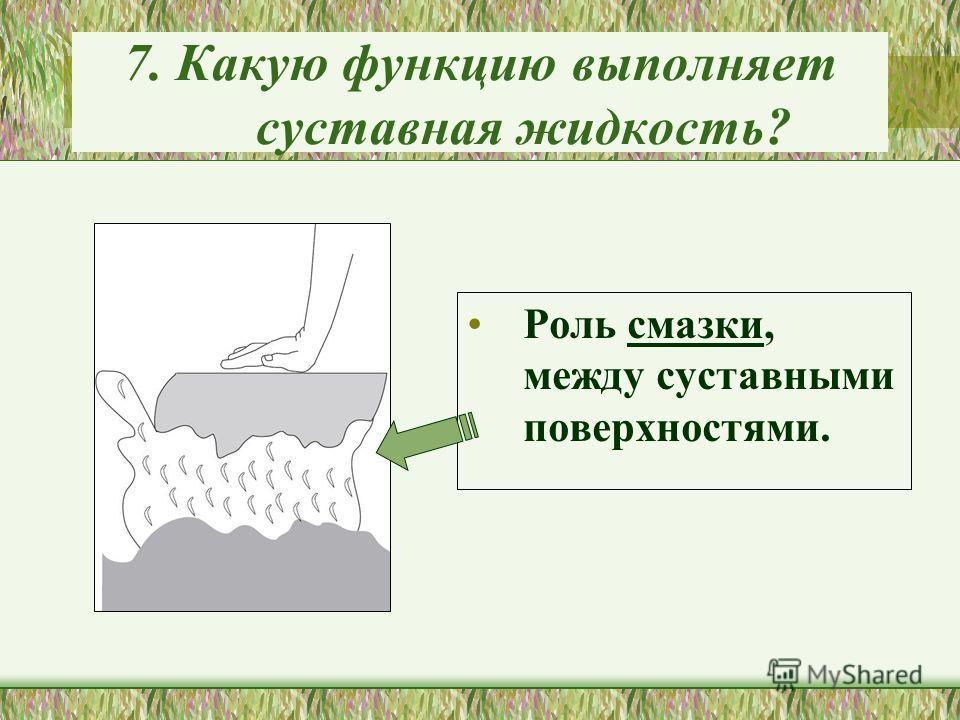 7. Какую функцию выполняет суставная жидкость? Роль смазки, между суставными поверхностями.