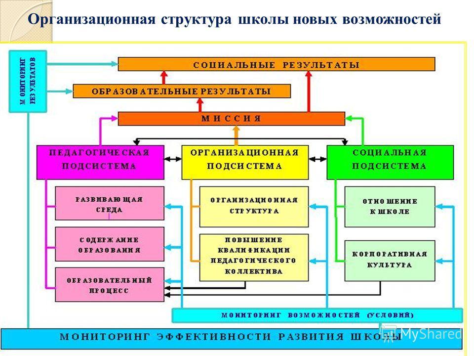 Организационная структура школы новых возможностей