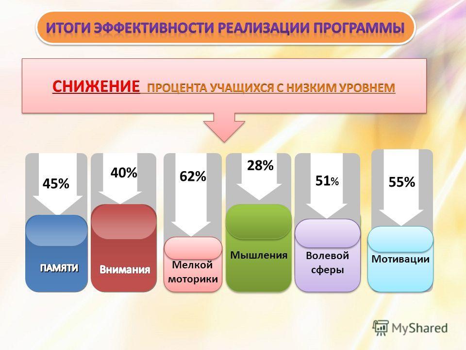45% 40% 62% 28%28% Мышления Мелкой моторики Мелкой моторики Волевой сферы Волевой сферы 51 % Мотивации 55%