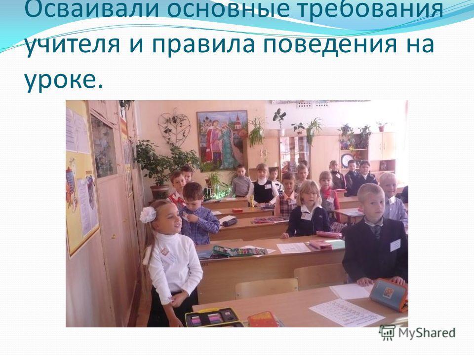Осваивали основные требования учителя и правила поведения на уроке.