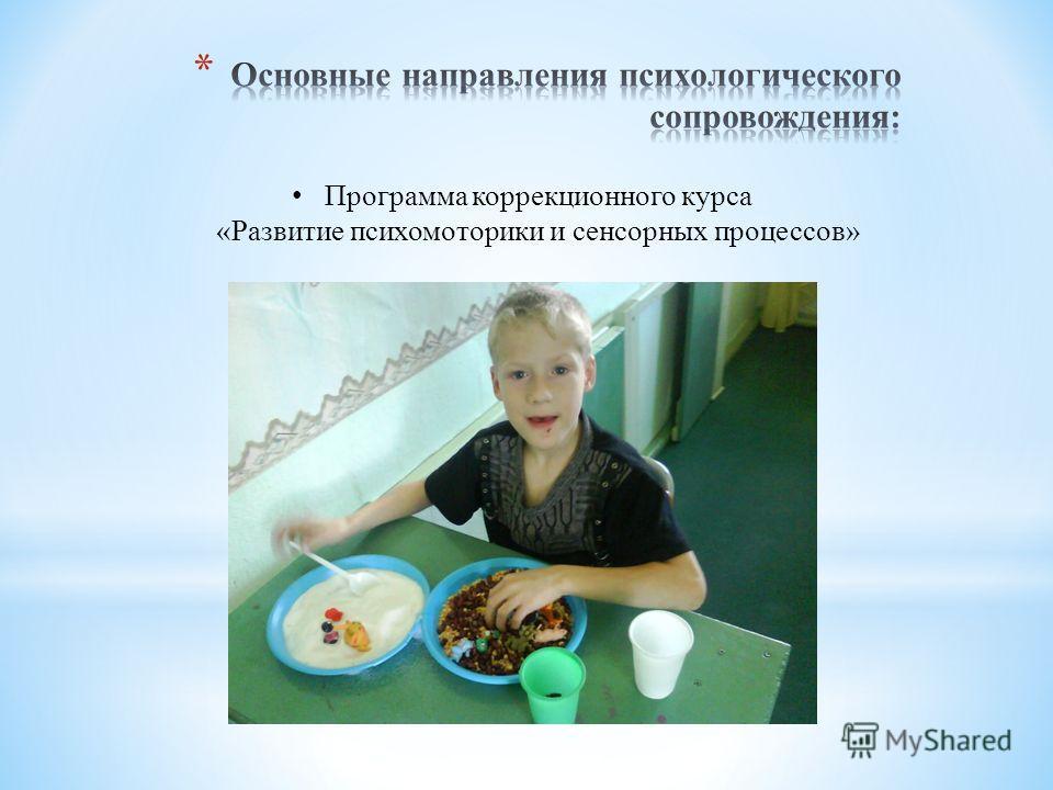 Программа коррекционного курса «Развитие психомоторики и сенсорных процессов»