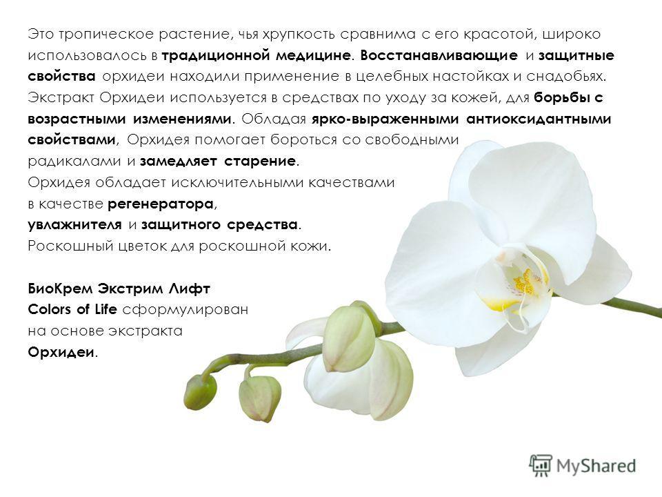 Это тропическое растение, чья хрупкость сравнима с его красотой, широко использовалось в традиционной медицине. Восстанавливающие и защитные свойства орхидеи находили применение в целебных настойках и снадобьях. Экстракт Орхидеи используется в средст
