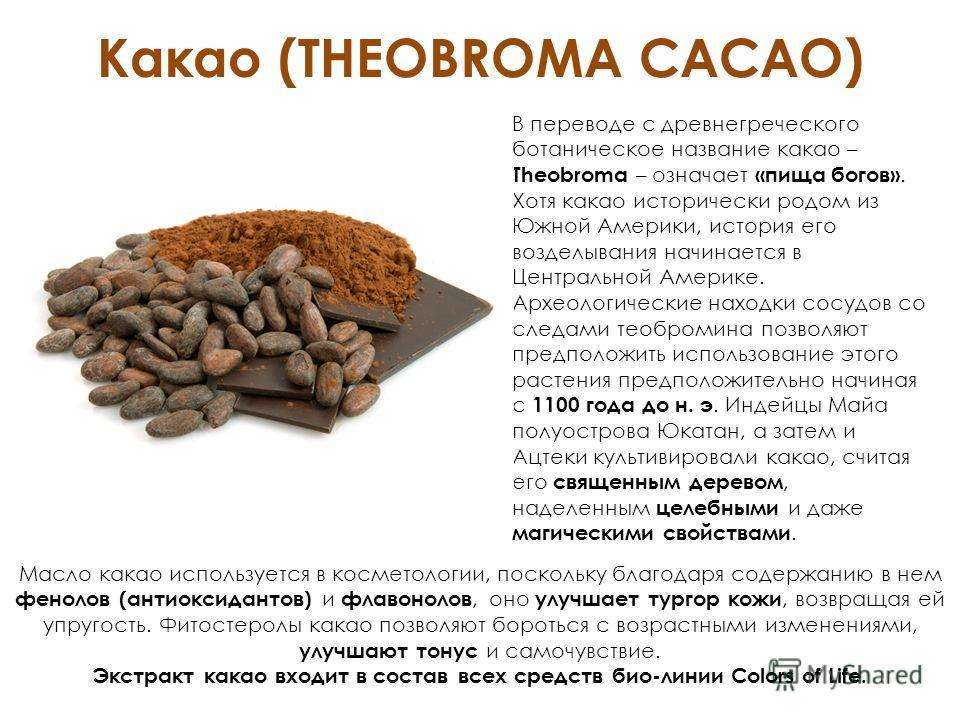 Какао (THEOBROMA CACAO) В переводе с древнегреческого ботаническое название какао – Theobroma – означает «пища богов». Хотя какао исторически родом из Южной Америки, история его возделывания начинается в Центральной Америке. Археологические находки с