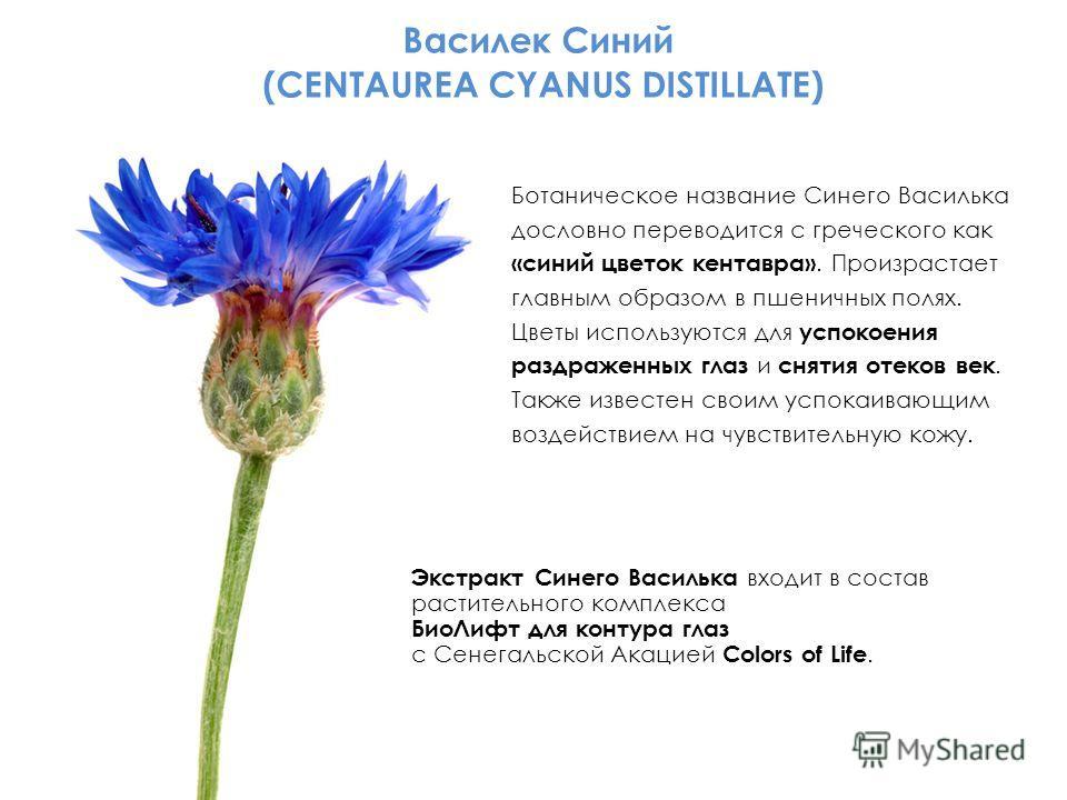 Василек Синий (CENTAUREA CYANUS DISTILLATE) Ботаническое название Синего Василька дословно переводится с греческого как «синий цветок кентавра». Произрастает главным образом в пшеничных полях. Цветы используются для успокоения раздраженных глаз и сня