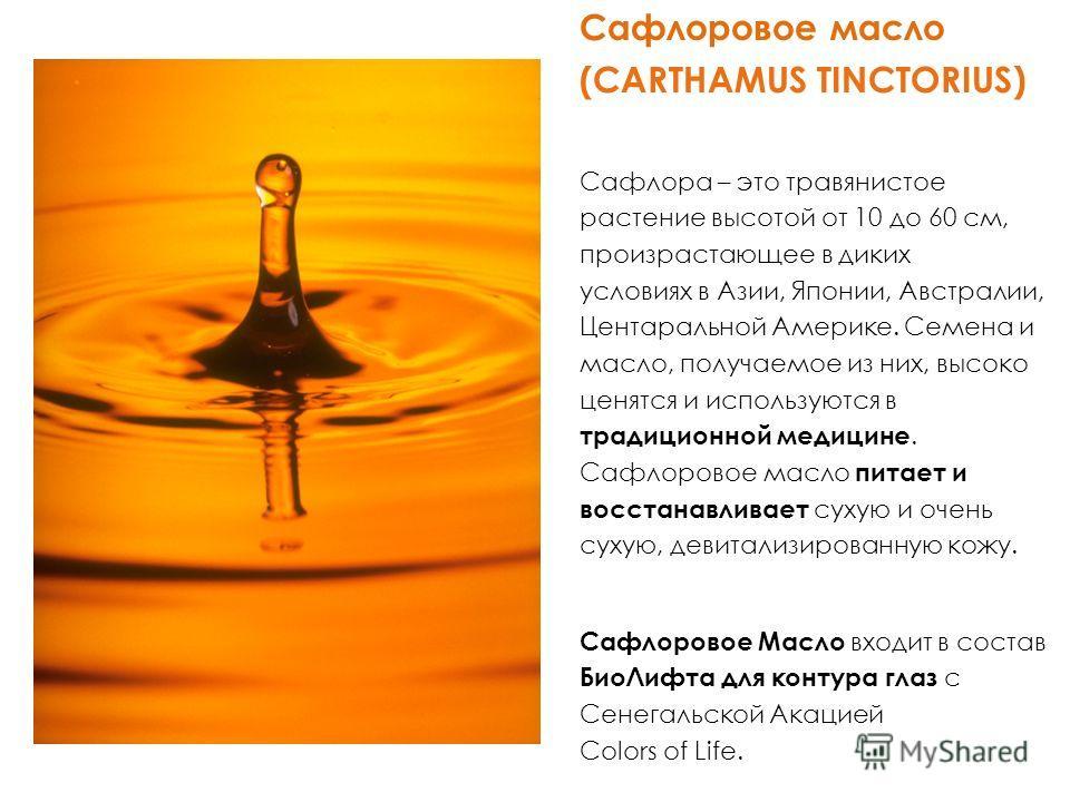 Сафлоровое масло (CARTHAMUS TINCTORIUS) Сафлора – это травянистое растение высотой от 10 до 60 см, произрастающее в диких условиях в Азии, Японии, Австралии, Центаральной Америке. Семена и масло, получаемое из них, высоко ценятся и используются в тра