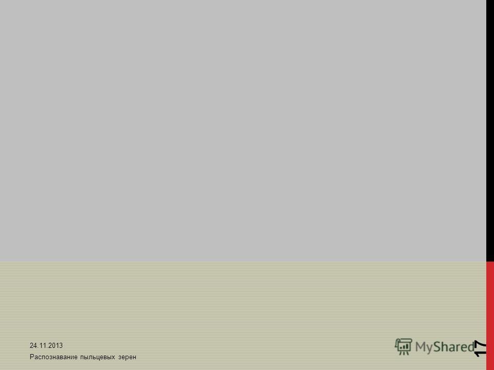 24.11.2013 Распознавание пыльцевых зерен 17