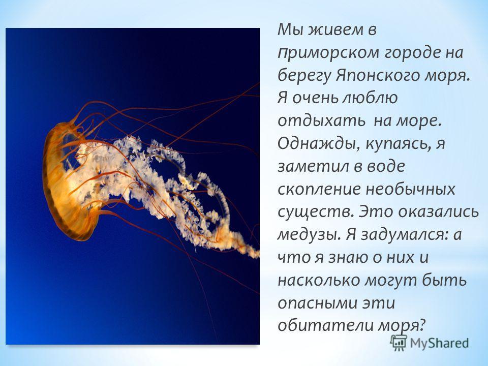 Мы живем в п риморском городе на берегу Японского моря. Я очень люблю отдыхать на море. Однажды, купаясь, я заметил в воде скопление необычных существ. Это оказались медузы. Я задумался: а что я знаю о них и насколько могут быть опасными эти обитател