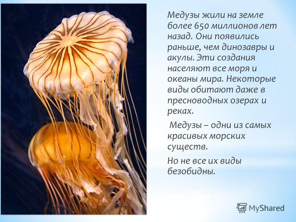 Медузы жили на земле более 650 миллионов лет назад. Они появились раньше, чем динозавры и акулы. Эти создания населяют все моря и океаны мира. Некоторые виды обитают даже в пресноводных озерах и реках. Медузы – одни из самых красивых морских существ.