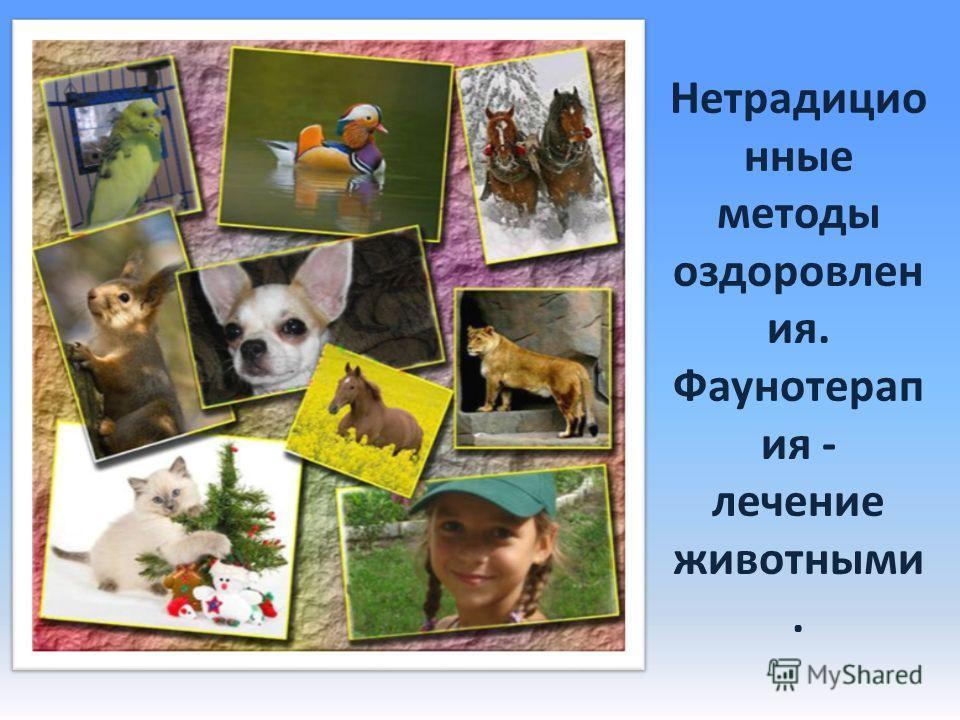 Нетрадицио нные методы оздоровлен ия. Фаунотерап ия - лечение животными.