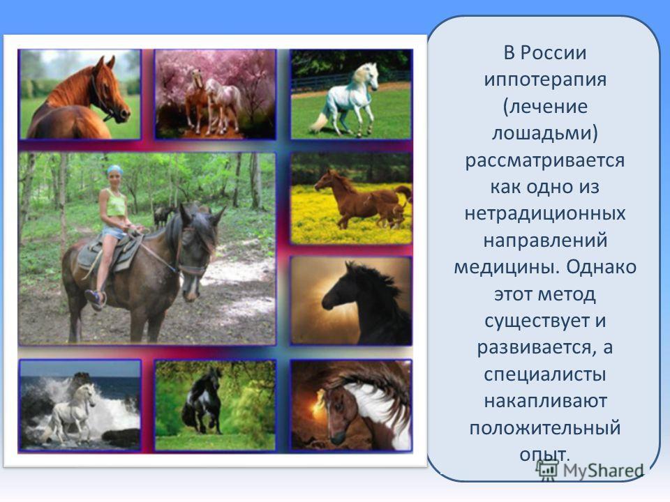 В России иппотерапия (лечение лошадьми) рассматривается как одно из нетрадиционных направлений медицины. Однако этот метод существует и развивается, а специалисты накапливают положительный опыт.