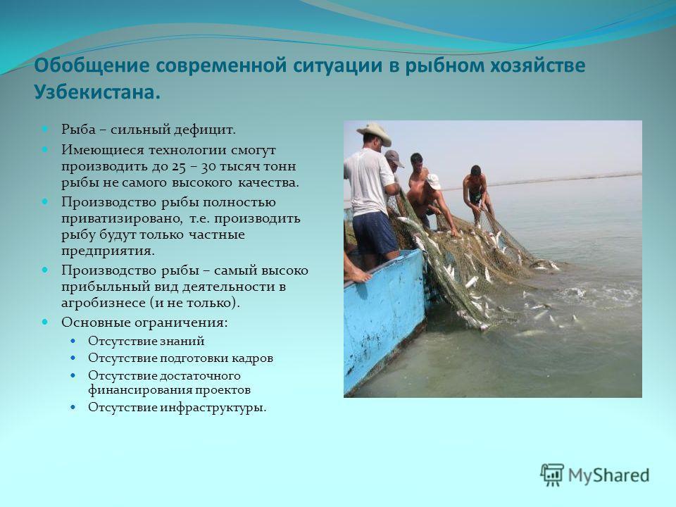 Обобщение современной ситуации в рыбном хозяйстве Узбекистана. Рыба – сильный дефицит. Имеющиеся технологии смогут производить до 25 – 30 тысяч тонн рыбы не самого высокого качества. Производство рыбы полностью приватизировано, т.е. производить рыбу