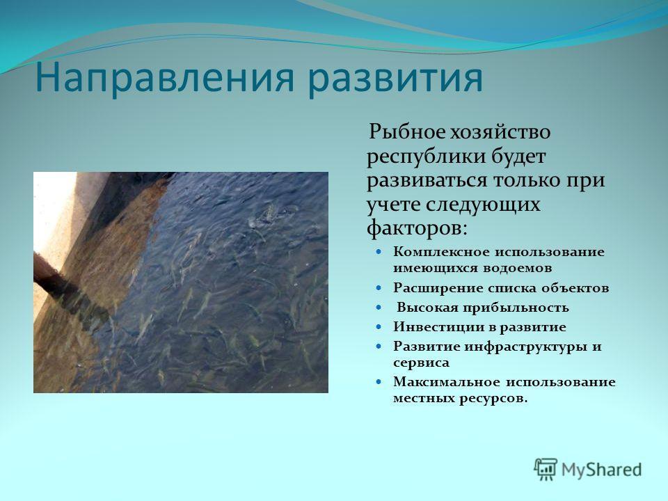 Направления развития Рыбное хозяйство республики будет развиваться только при учете следующих факторов: Комплексное использование имеющихся водоемов Расширение списка объектов Высокая прибыльность Инвестиции в развитие Развитие инфраструктуры и серви