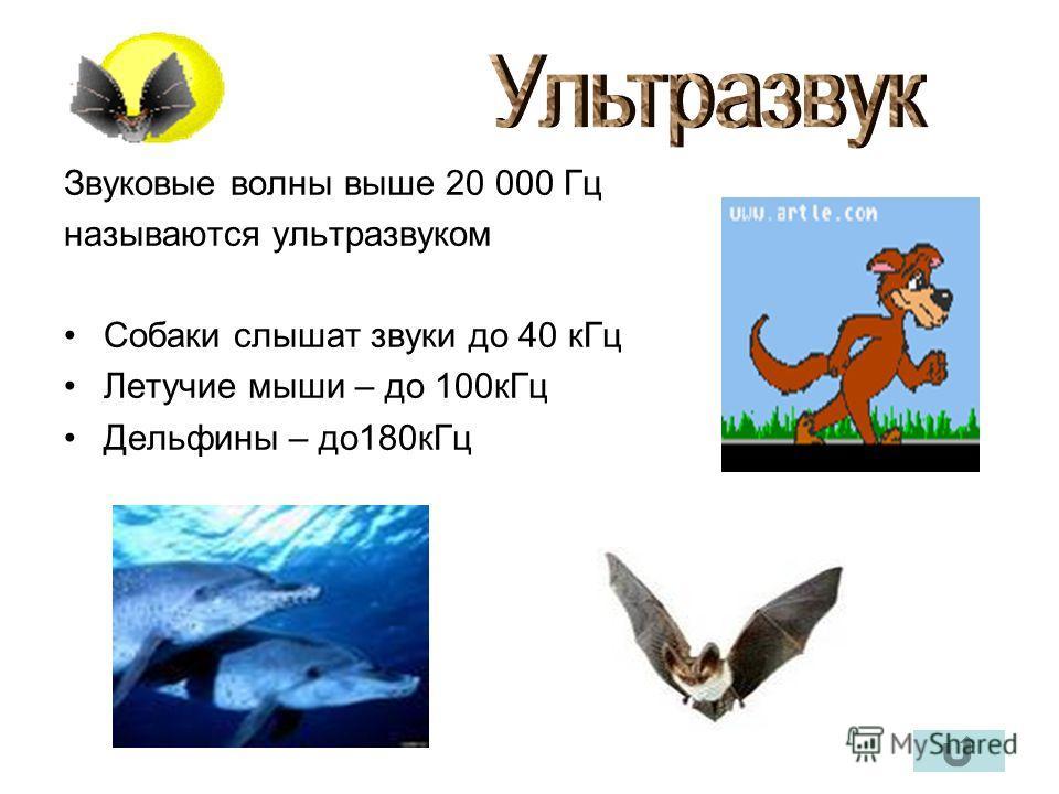 Звуковые волны выше 20 000 Гц называются ультразвуком Собаки слышат звуки до 40 кГц Летучие мыши – до 100кГц Дельфины – до180кГц